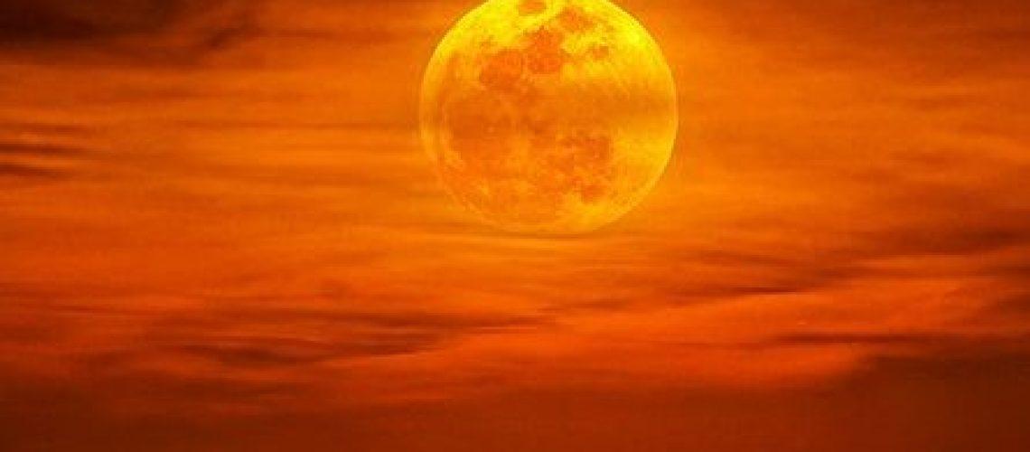 the autumn moon